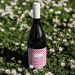 Cab Franc Wine